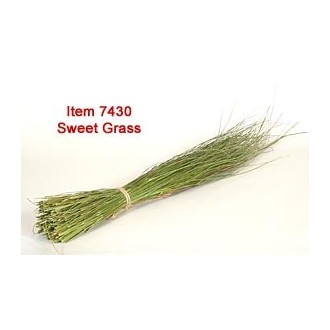 Using Sweetgrass for Basketry