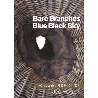 Bare Branches Blue Black Sky by Joe Hogan