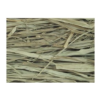 Winter Wheat Raffia 2 oz.
