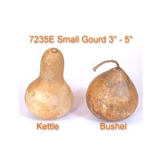 Small Gourd 3 to 4 inches diameter