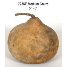 Medium Gourd 5 to 6 inches diameter
