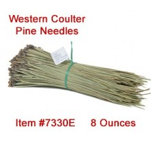 Western Coulter Pine Needles - 8 oz. bundle