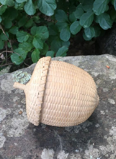 acorn alice ogden