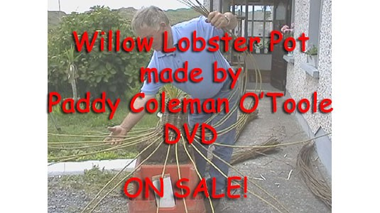 DVD - Lobster Pot
